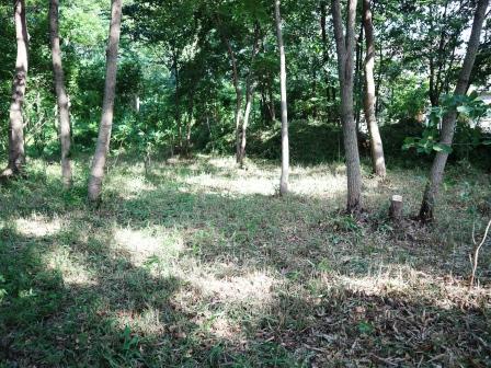 草刈り後の風景