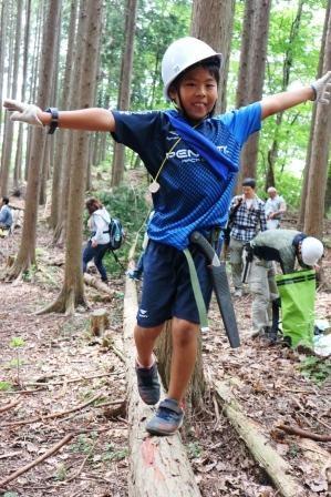 木の上でバランス