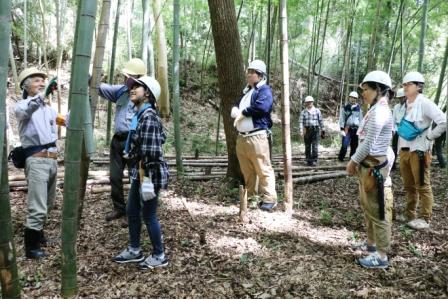 竹伐採レクチャー