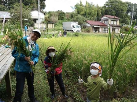 稲刈り 田んぼ 東京 ボランティア 八王子滝山