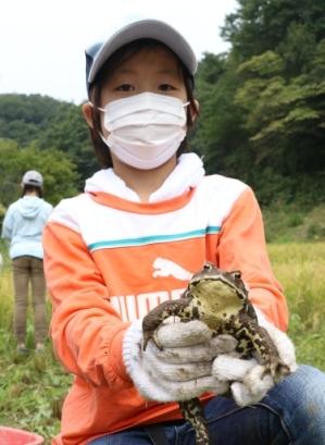 巨大カエル