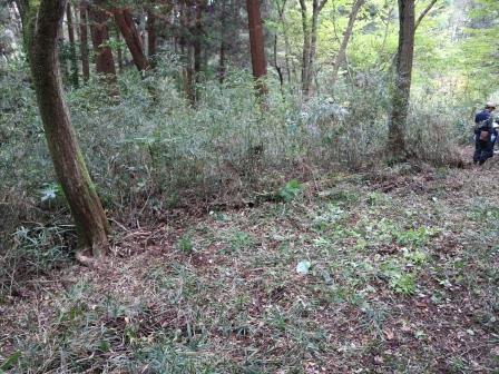 草刈り後 保全地域 東京都