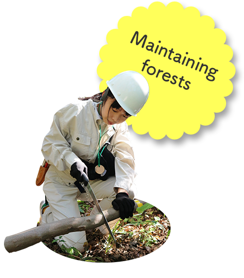 Maintaining forests