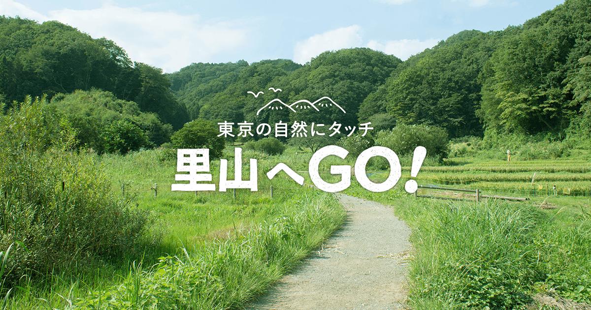 東京の自然にタッチ 里山へGO! / 森林・緑地保全活動情報センター 事務局